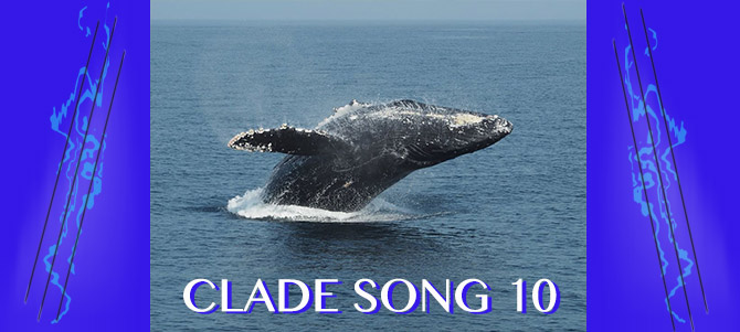 Clade Song 10 Banner